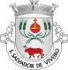 Brasão de São Salvador de Viveiro