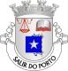 Brasão de Salir do Porto