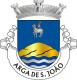 Brasão de Arga de São João