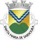 Brasão de Santa Maria de Sardoura