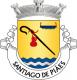Brasão de Santiago de Piães