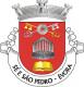 Brasão de Évora - Sé e São Pedro