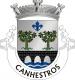 Brasão de Canhestros
