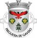 Brasão de Gavião