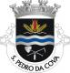 Brasão de São Pedro da Cova
