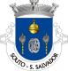 Brasão de Souto - São Salvador