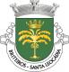 Brasão de Santa Leocádia - Briteiros