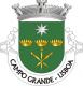 Brasão de Campo Grande