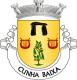 Brasão de Cunha Baixa
