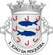 Brasão de São João da Pesqueira