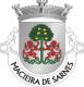 Brasão de Macieira de Sarnes