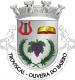Brasão de Troviscal