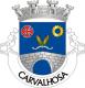 Brasão de Carvalhosa