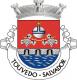Brasão de Touvedo - Salvador