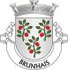Brasão de Brunhais