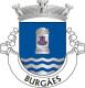 Brasão de Burgães