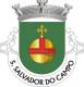 Brasão de São Salvador do Campo