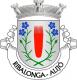 Brasão de Ribalonga
