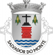 Brasão de Salvador do Monte